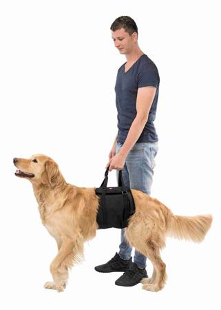 Nosidło, uprząż rehabilitacyjna dla psa