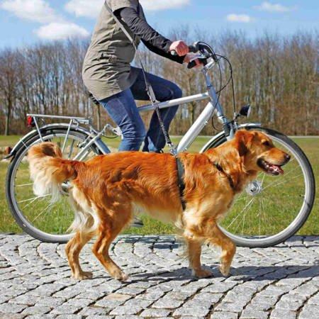 Smycz dla psa z amortyzatorem do jazdy na rowerze i biegania