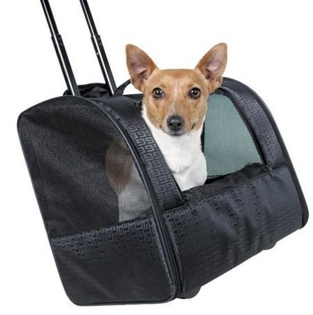 Torba na kółkach do transportu psa - do 10 kg