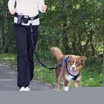 Pas i smycz z amortyzatorem do biegania z psem